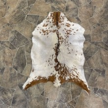 oat Hide Taxidermy Tanned Skin For Sale #25315 @ The Taxidermy Store