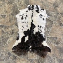 Goat Hide Taxidermy Tanned Skin For Sale #25319 @ The Taxidermy Store