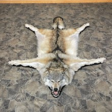 Gray Wolf Rug Taxidermy Mount For Sale #24180 @ The Taxidermy Store