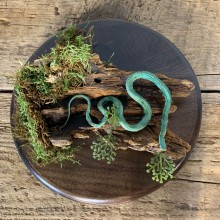 Green Snake Taxidermy Mount For Sale #21541 @ The Taxidermy Store