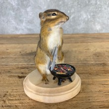 Grilling Chipmunk Novelty Mount For Sale #23240 @ The Taxidermy Store