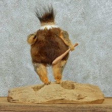 Whatchamacallit Taxidermy Mount #13260 For Sale @ The Taxidermy Store