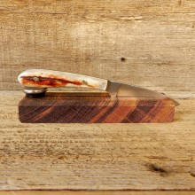 Mini Caper Caping Knife For Sale #19212 @ The Taxidermy Store