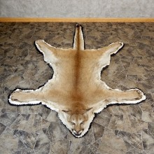 Mountain Lion Full-Size Rug For Sale #19263 @ The Taxidermy Store