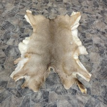 Mule Deer Tanned Hide For Sale #25265 @ The Taxidermy Store