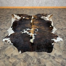 Multi-Color Cowhide Taxidermy Tanned Skin For Sale #22702 @ The Taxidermy Store