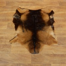 Multi-Color Goat Hide Taxidermy Tanned Skin For Sale #17883 @ The Taxidermy Store