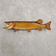 Northern Pike Fish Taxidermy Mount For Sale #20898 @ The Taxidermy Store