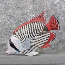 'Ocean Fish' Wood Carving #11604 - For Sale @ The Taxidermy Store