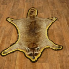 Raccoon Full-Size Rug Mount For Sale #17429 @ The Taxidermy Store