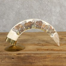 Scrimshawed Hippopotamus Tooth For Sale #20638 @ The Taxidermy Store