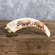 Scrimshaw Warthog Tooth Safari Decor For Sale