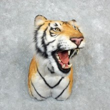 Reproduction Siberian Tiger Shoulder Mount For Sale #18293 @ The Taxidermy Store