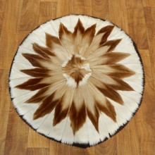 Springbok Rug Mount For Sale #17502 @ The Taxidermy Store