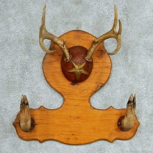 Whitetail Deer Antlers Gun Rack Taxidermy Mount #13319 For Sale @ The Taxidermy Store