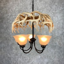 Whitetail Deer Antler Chandelier For Sale #21278 @ The Taxidermy Store