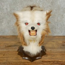 Swamp Booger Novely Mount For Sale #15862 @ The Taxidermy Store